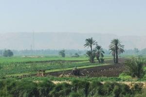 egypt_0028