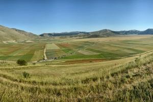 DSC_0262-Panorama