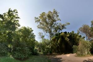 DSC_0824-Panorama