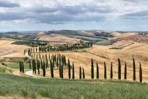 DSC_0541-Panorama