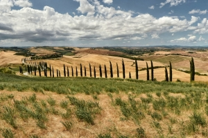 DSC_0558-Panorama