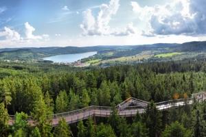 DSC_4227 Panorama